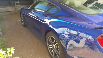 2016 Mustang Graphics
