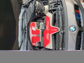 BMW engine covers custom painted