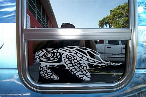 Sea turtle etched in van glass