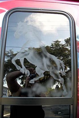 Horse on van window