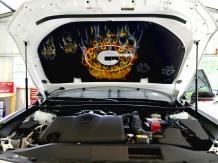 Georgia themed hood liner on Toyota