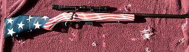 Patriotic theme on .22 Rifle