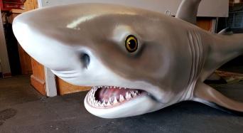Black tip shark eyes/mouth