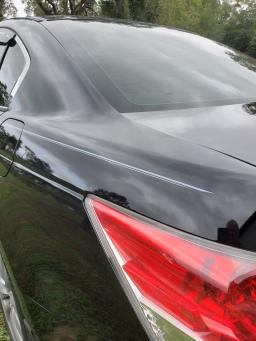 Gray Body lines on Honda