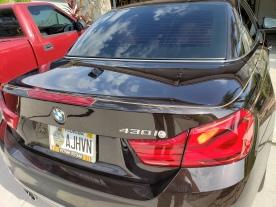 Pinstriping on BMW