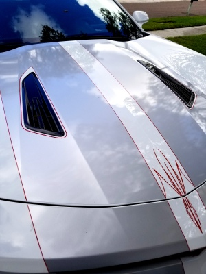 Red pinstripes outlined graphics with accents