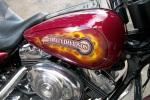 True Fire on Harley