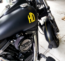 Yellow stripe on flat black harley