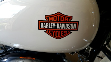 Harley Logo airbrushed on tank