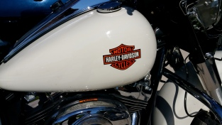 Harley Logo airbrushed on tank