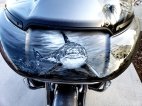 Shark themed Harley