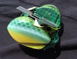 green fish design reel