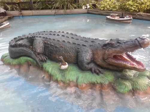 Alligator in water now